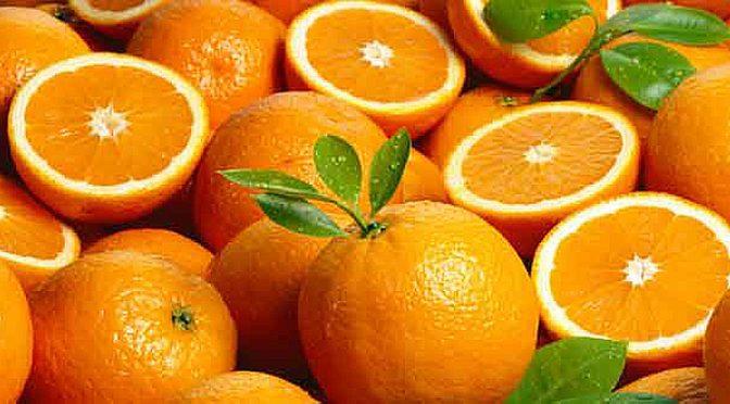 Τετραπλάσιες τιμές φέτος για τα πορτοκάλια Βαλέντσια Λακωνίας